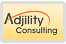 Adjility Consulting